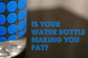 Water-bottle-Fat-by-Flickr-stevendepolo-300x199