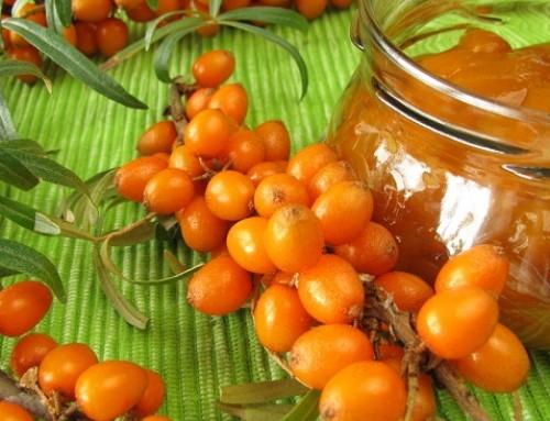 Облепиха – мощен източник на Омега 7 и витамин C