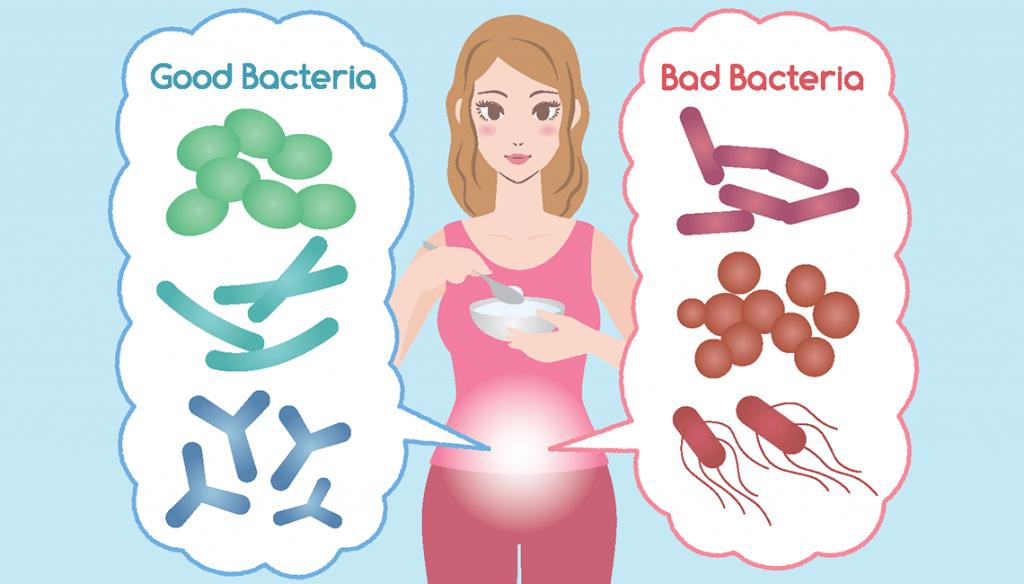 ползите от пробиотиците